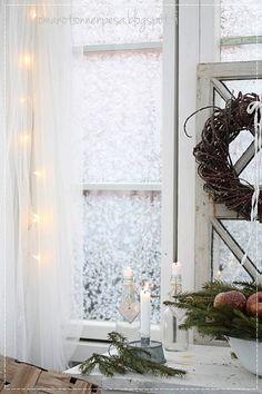 talvipuutarha, kesähuone, kuurankukat, vanhat ikkunat