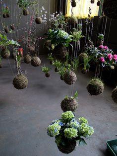 string gardens | string garden fedor van der valk hanging planters string garden ...