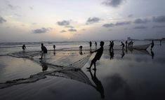 Pakistani fishermen pull their nets out of the sea onto the beach in Karachi, Pakistan, May 9, 2012. (Shakil Adil/Associated Press)