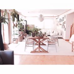hana729さんの、Overview,ソファー,IKEA,植物,ダイニングテーブル,yチェア,ルイスポールセン,ウォールデコ,ボタニカル,SLOW HOUSE についての部屋写真