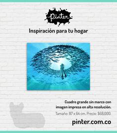 https://www.pinter.com.co/producto/ojo-del-oceano-photobank-gallery/