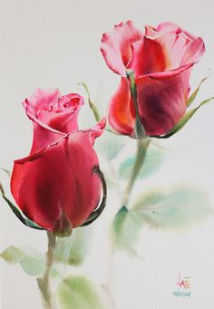 "Watercolor without Drawing ""Rose"" by LaFe"