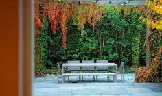 Backyard-Holidays-Outdoor-Design-9