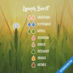 Lymph Boost — Essential Oil Diffuser Blend