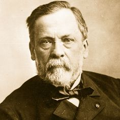 Louis Pasteur - one of the most important founders of medical microbiology.
