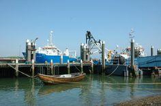 NIOZ haven. Het Koninklijk Nederlands Instituut voor Onderzoek der Zee (NIOZ) is een van de oudste oceanografische onderzoeksinstituten van Europa. Vanuit Texel en Yerseke doet het zeeonderzoek in binnen- en buitenland, onder meer vanaf zijn eigen onderzoeksvloot. Het NIOZ experimenteert bijvoorbeeld met de kweek van zeewier en zoutwateralgen voor voedsel, medicijnen en biobrandstof. - See more at: http://regiovanhollandsebodem.nl/beleven/belevenissen/nioz#sthash.4FjLVXx2.dpuf