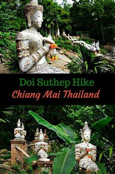 Doi Suthep Hike Chiang Mai. The Wat Soi Suthep is one of the most sacred and visited sites in Chiang Mai, Thailand. But if you decide to hike to the top rather than take the road you will find some beautiful and mysterious sites that may become your best memories of your trip to Thailand