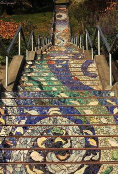 The 16th Avenue Tiled Steps, perhaps world's longest mosaic staircase (163 steps, 82' high), conceived & fabricated by Irish ceramicist Aileen Barr & San Francisco mosaic artist Colette Crutcher.