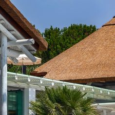 Thatch and timber in a natural setting - what a lovely combination.