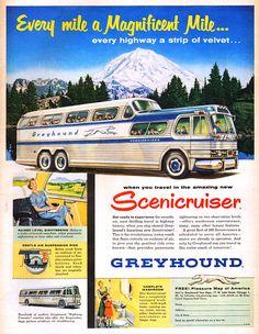 Greyhound - 1954