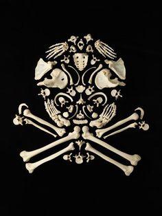 The Creepy Art of Human Bones - skull and crossbones Human Skeleton, Skeleton Art, Skeleton Bones, Memento Mori, Crane, Things Organized Neatly, Creepy Art, Creepy Stuff, Skull And Crossbones