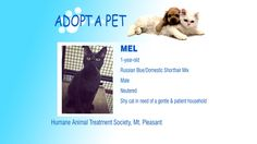 Adopt A Pet Tuesday: Victor, Mel & Sophie - Northern Michigan's News Leader
