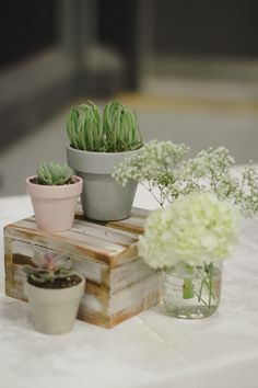 Centerpiece Idea 1: a centerpiece with wood slices,, a couple of succulents in pots & small jar/vase of baby's breath