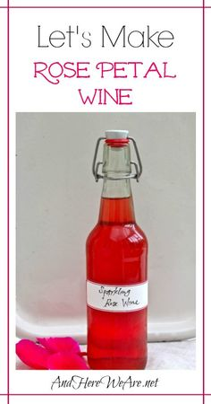 Rose Petal Wine-- You can make a really nice sparkling wine with just rose petals and few other ingredients! | And Here We Are...