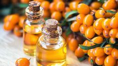 Sour Orange, Plant Sterols, Lower Your Cholesterol, Oil Benefits, Carrier Oils, Nutritional Supplements, Anti Aging, Healthy Life, Top