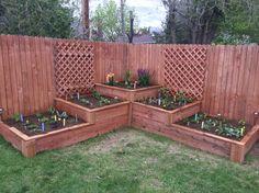 My beautiful raised garden bed!!  It took a lot of work and I love it!!  #raisedgardenbed #greenthumb #herbgarden #vegetablegarden #corner