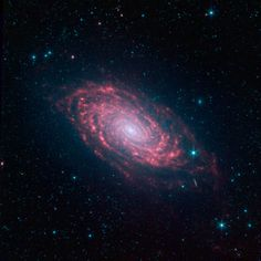The various spiral arm segments of the Sunflower galaxy, also known as Messier 63, show up vividly in this image taken in infrared light by NASA's Spitzer Space Telescope. Infrared light is sensitive to the dust lanes in spiral galaxies, which appear dark in visible-light images.