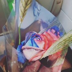 Un poquito de San Jordi por favor  @xiii_san  #santjordi #rosa #rosas #diadellibro
