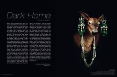 Raise Magazine Issue #13 DARK HOME
