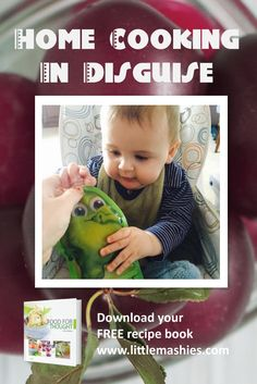 Baby food storage system and recipes for all ages reusable food baby food storage system and recipes for all ages reusable food pouches by little mashies download free recipe book from littlemashies pinterest forumfinder Image collections