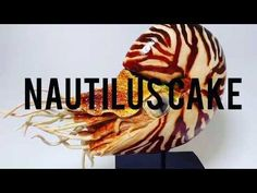 Nautilus sculpted cake💕 - YouTube Sculpted Cakes, Cake Youtube, Nautilus, Sculpting, Sculpture, Sculptures