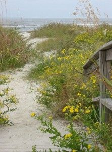 One of several beautiful beach paths on private Harbor Island