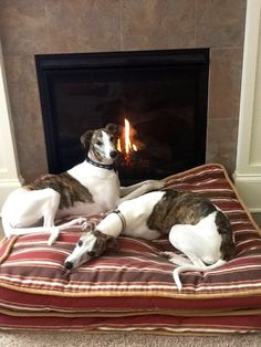 ~ Cuddling by the fire ~