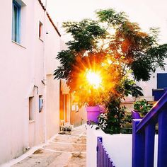 Amazing Greek sunshine at Kea-Tzia island ( Κέα-Τζιά ) ☀️. Inside the alley of Vourkari village , stunning white and colorful background of the sun !! A big island and the closest to Athens from the Cyclades islands with very beautiful landscapes .