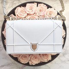 White Dior Diorama