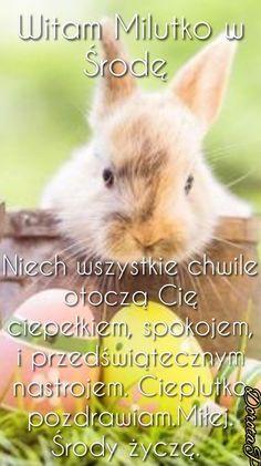 Good Morning, Humor, Animals, Buen Dia, Animales, Bonjour, Animaux, Humour, Funny Photos