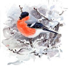 Lars Jonsson at DuckDuckGo Bullfinch, Bird Illustration, Wildlife Art, Bird Art, Illustrators, Birds, Drawings, Nature, Artist