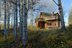 Could you cope with the long-term isolation in your cabin in the woods? Michael Wheatley / All Canada Photos / Getty Images