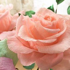 いいね!24件、コメント3件 ― Sanae Shirouraさん(@sanae.shiroura)のInstagramアカウント: 「#クレープペーパーフラワー #紙の花 #paperflower #crepepaperflowers #crepepaper…」