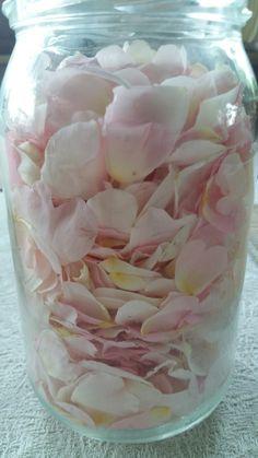 Diy Beauty, Beauty Hacks, Baby Shower Fun, Lilac, Mason Jars, Glass Vase, Essential Oils, Herbs, Crafts