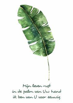 """Kaart """"Leaf"""" Opwekking 697 - WW, verkrijgbaar bij #kaartje2go voor € 1,89"""