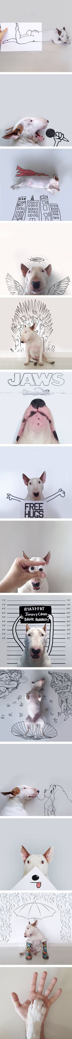 Dog Owner Creates Funny Illustrations With His Bull Terrier And They Are Awesome Tap the link for an awesome selection cat and kitten products for your feline companion! Cute Puppies, Cute Dogs, Dogs And Puppies, Doggies, Animals And Pets, Funny Animals, Cute Animals, Animal Pictures, Funny Pictures