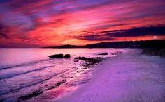 """Résultat de recherche d'images pour """"purple images"""""""