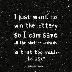 Oh my gosh I was literally talking ro my husband about this 2 days ago! : Oh my gosh I was literally talking ro my husband about this 2 days ago! I Love Dogs, Puppy Love, Animals And Pets, Cute Animals, Susa, Thats The Way, Animal Quotes, Animal Rescue Quotes, My Animal