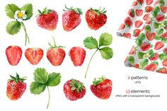 Watercolor Strawberry by ognivo on Creative Market