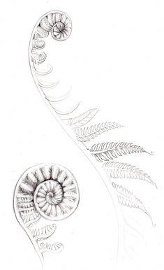maori tattoos meaning Tatoo Art, Body Art Tattoos, New Tattoos, Sleeve Tattoos, Maori Tattoos, Group Tattoos, Tatoos, Geometric Tattoo Pattern, Tattoos Geometric