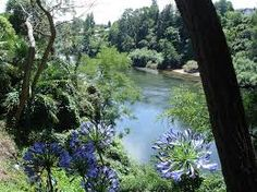 The Waikato River, Hamilton. My hometown for 3 years :) Hamilton New Zealand, To Go, River, Places, Outdoor, Image, 3 Years, Outdoors, 3 Year Olds