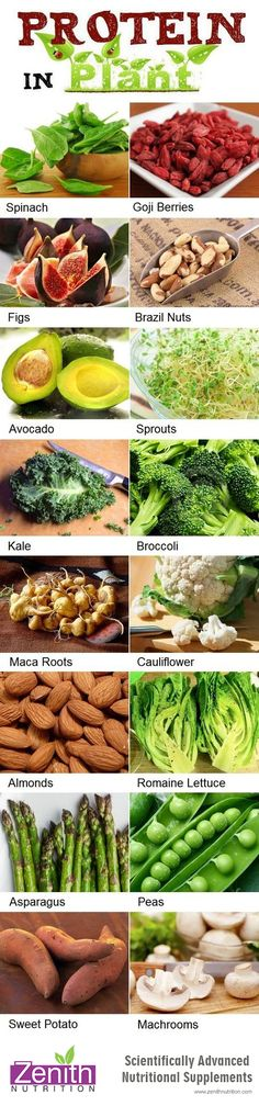 Protein In Plants. Spinach, Goji berries, figs, brazil nuts, avocado, sprouts, kale, broccoli, maca roots, cauli flower, almonds, romaine lettuce, asparagus, peas, sweet potato, machrooms. Best supplements from Zenith Nutrition. Health Supplements. Nutritional Supplements. Health Infographics