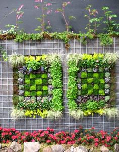 Living Walls as Art...Vertical gardens from The Daily Green    Very Interesting. Now that's cool.