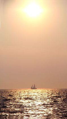 Under The Golden Sun~ lovely photo mirroring previous color schemes. I think that this would be a wonderful accent color w/the charcoal. Shades Of Peach, Golden Sun, Trendy Wallpaper, Strand, Sailing, Scenery, Nature, Beautiful, Rose Gold