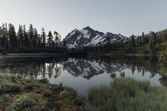 Reflect. by dominicstarley