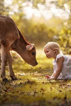 Animals for kids, animals and pets, kids and pets, baby animals, cu Animals For Kids, Cute Baby Animals, Animals And Pets, Cute Animal Videos, Cute Animal Pictures, Amazing Pictures, Cute Kids, Cute Babies, Farm Kids