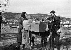 Μετανάστευση από τα Γρεβενά