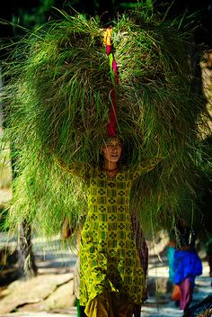 Woman carrying grass bought from a market to be used as cattle feed, Kumaon (India) - Photo Michael Gebicki