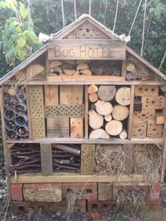 Attracting insects to your garden will help lots of wildlife including hedgehogs and birds. The number one food for hedgehogs is beetles. An insect hotel, log piles and wild areas will all attract insects to your garden. Eco Garden, Garden Bugs, Garden Pond, Bug Hotel, Hedgehog House, Outdoor Learning, Garden Planning, Garden Projects, Bird Houses