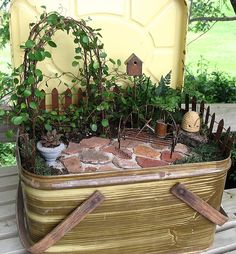 Miniature Garden in a Picnic Basket